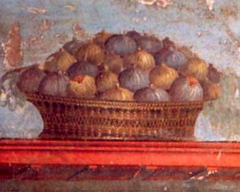 xenia-pompei