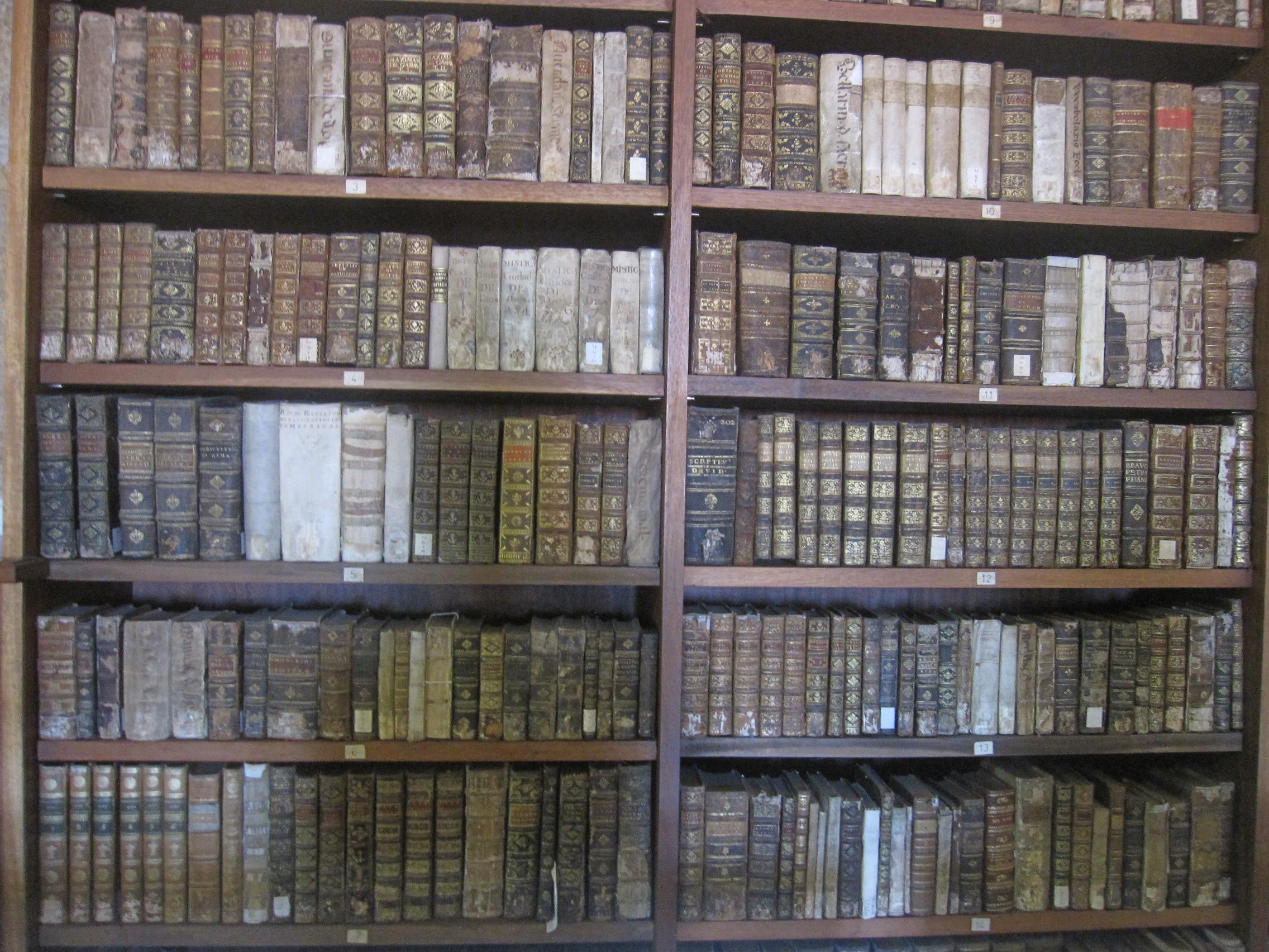 Biblioteca-Joanina-vieux-livres