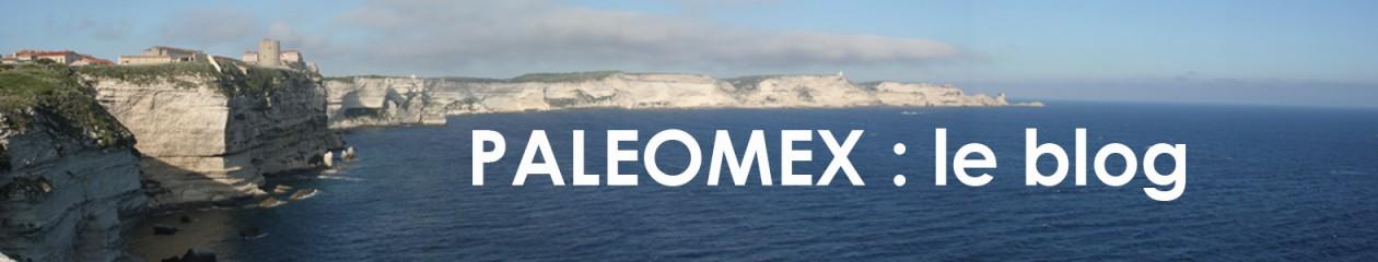 PALEOMEX : le blog