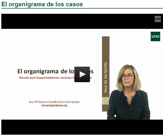 El_organigrama_de los casos