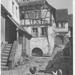 Pfalz_11