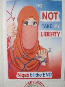 Do not take my liberty, Tunis, mai 2013 (Loïc Le Pape CC-BY-NC)