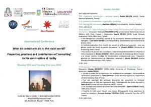 What do consultants do to the social world - Program