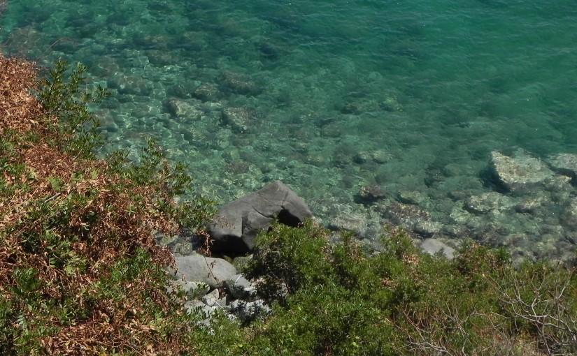 """""""Lace: Greek OCR"""": plus de 600 éditions de textes grecs avec reconnaissance de caractères"""
