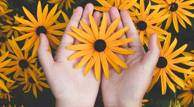 L'analgisant altruisme (chronique 130)