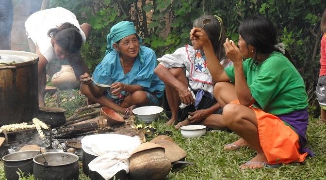 La Mikuna de la communauté Mishkyyaquillu de Shapumba (Pérou)
