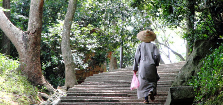 A Chinese nun climbing ascending steps on Mount Putuo Shan island