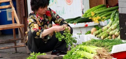 Lascaux Shanghai 2010