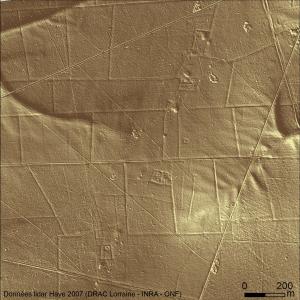 Image Lidar d'un secteur au sud de la forêt de Haye (visualisation par ombrage azimut 45°- élévation 10°)