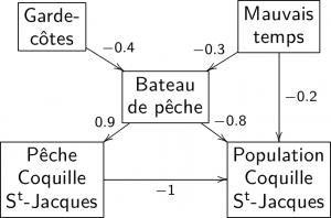 Exemple de graphe cognitif défini sur l'ensemble de valeurs [-1;1].
