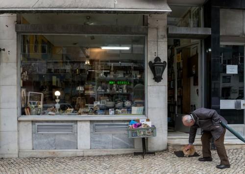 Livraria Ulmeiro Foto: CML / Ana Luísa Alvim