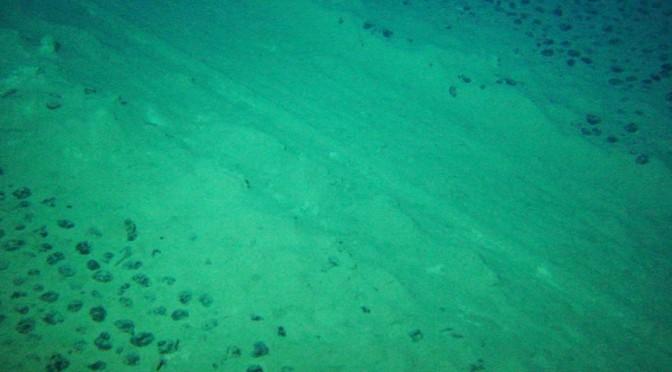Le droit de la mer face aux nouvelles ressources rares et le devoir de protection de l'environnement