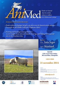 AniMed-1-A4-211114