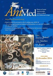 Animed-2-A4-161214Dario