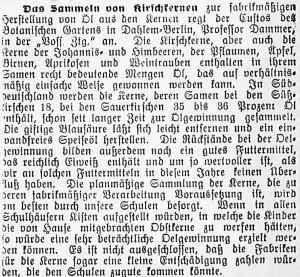 19150630_Kirschkerne_582