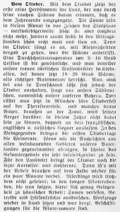 19151001_Oktober_96