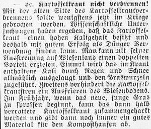 19161006_Kartoffelkraut_442