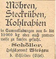 04111916-moehren