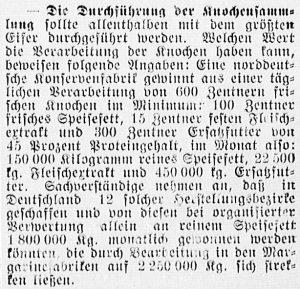 19170117_knochensammlung_529
