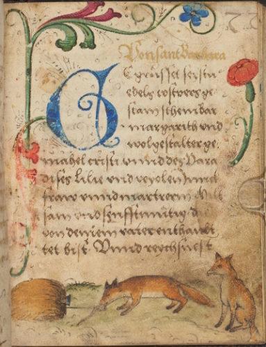 Cod. 686 (Hübl 735), fol. 77r: Deutschsprachiges Gebetsbuch (17. Jh.).