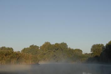 brume matinale