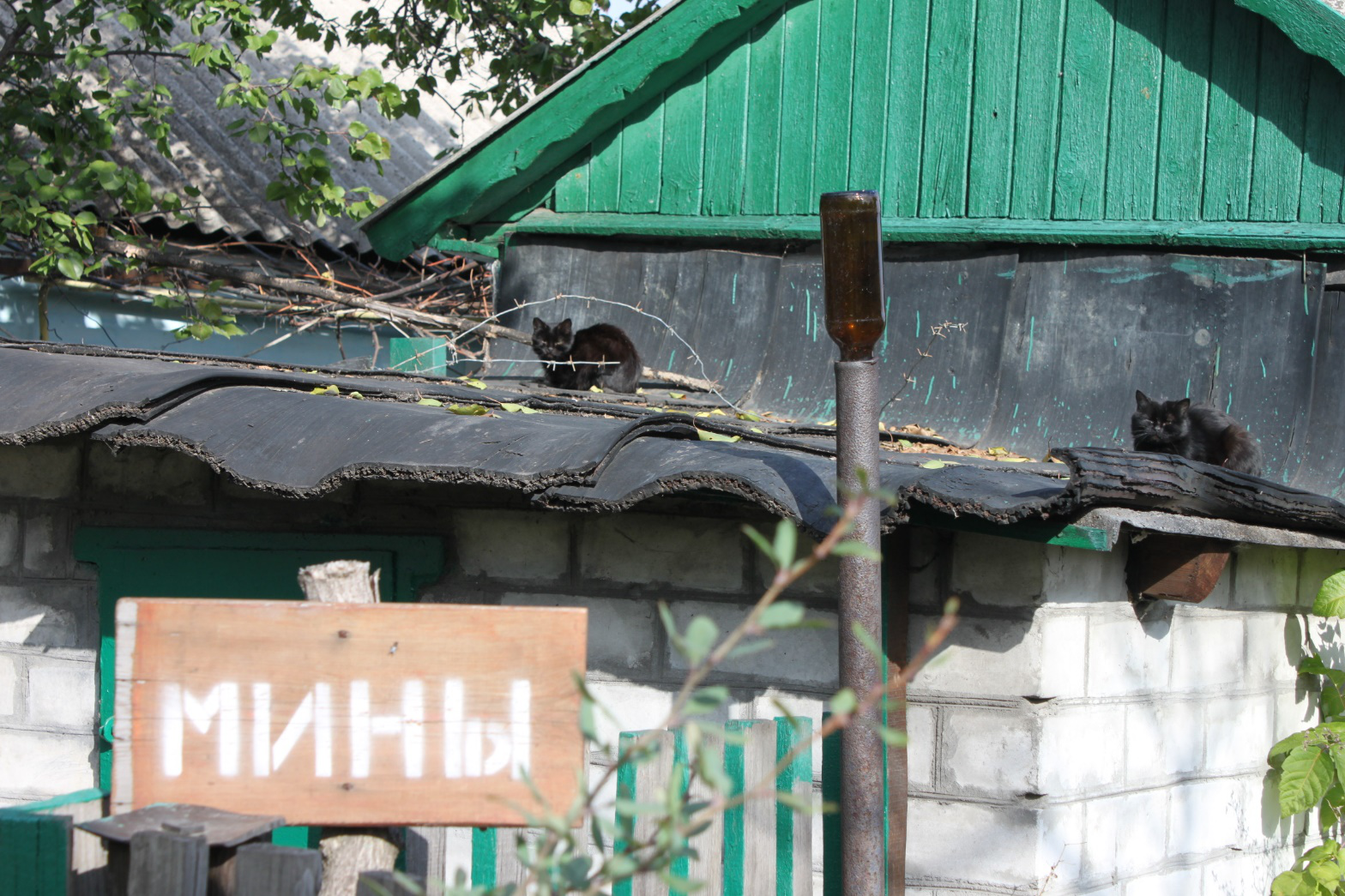 """""""Minen"""" warnt das Schild. Laut UN stellen Minen für zwei Millionen Ukrainerinnen und Ukrainer eine konstante Bedrohung dar. Auch in der Graphic Novel thematisiert eine Geschichte dieses Problem. - Foto: Volodymyr Shcherbachenko"""