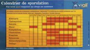 Calendrier des sporulations - copie