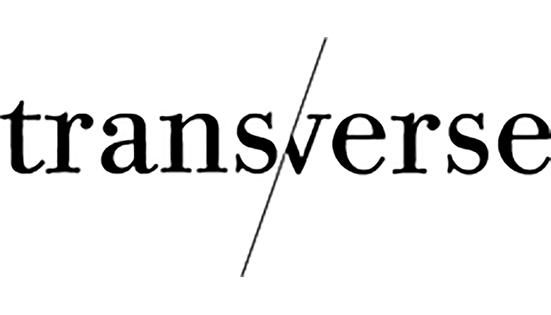 A venir : dossier «Faire histoire», en partenariat avec Transverse, anthologie de l'art contemporain
