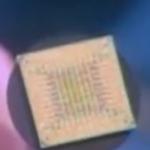 Puce avec circuits