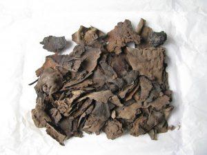 Nubische Fragmente