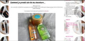 Screenshot, 14 mai 2014  Blog L'instant cosmétique,  article Comment je prends soin de ma chevelure, 14 mai 2014