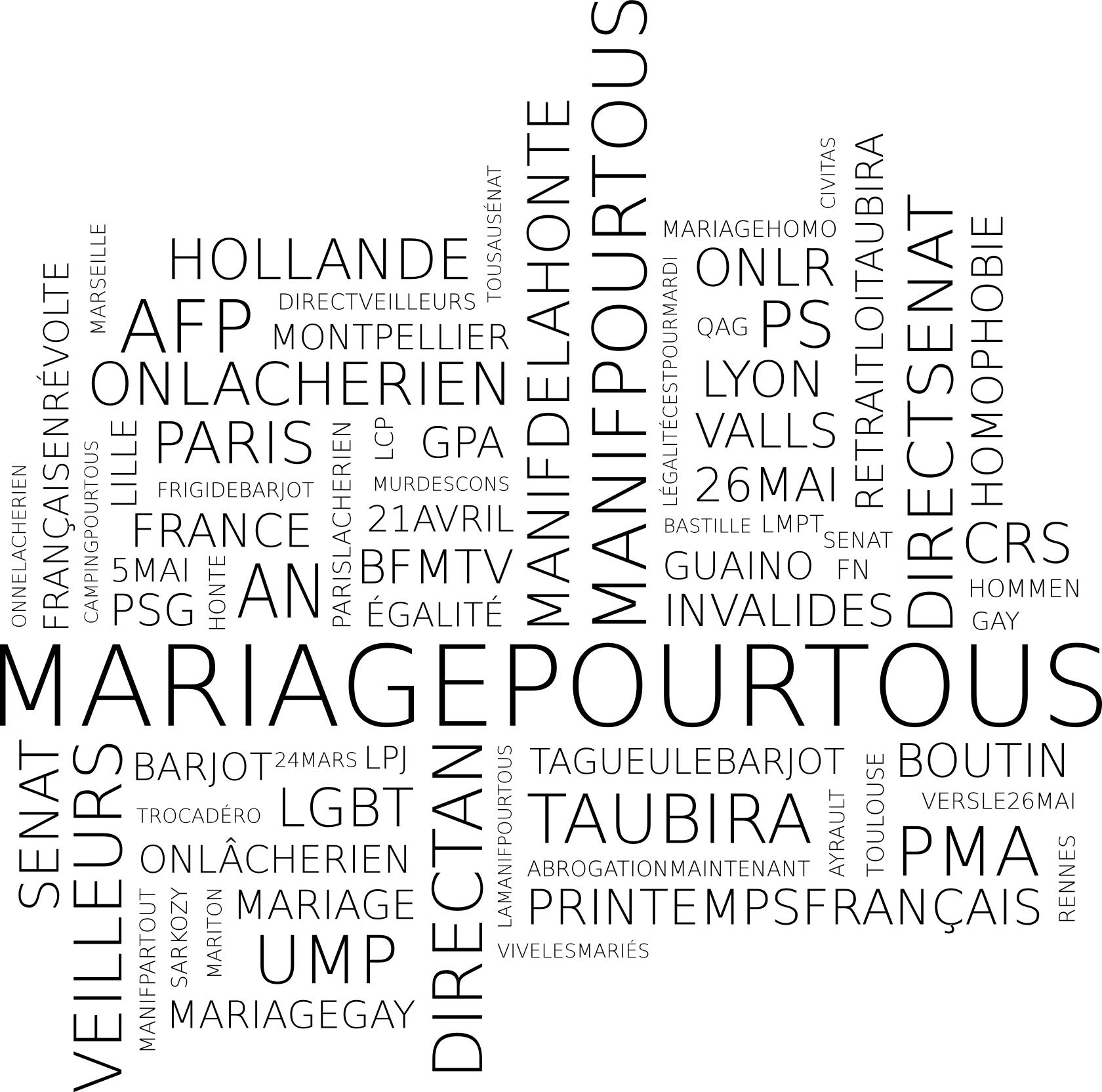 nuage de hashtags collectés dans twitter durant le débat à l'assemblée nationale sur l'ouverture du mariage aux personnes de même sexe