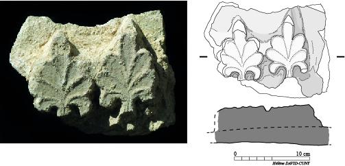 Fig. 2 : fragment de stuc découvert en 2008 dans l'église monumentale (MAFKF 2014)