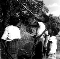 Fig. 7 : Sarbacane en bambou