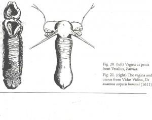 Laqueur 1990 Vesalius