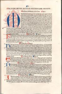 Plinius fol19r