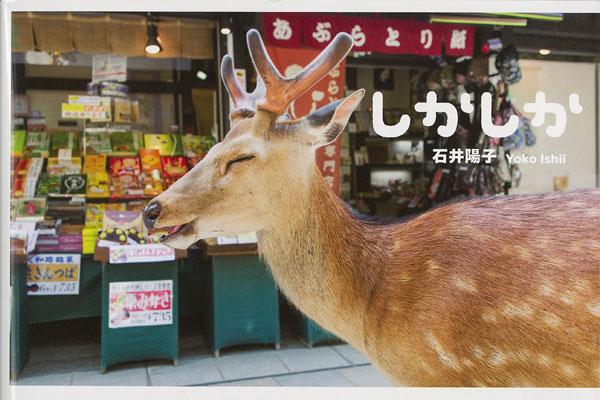 """Première de couverture du livre : Yoko Ishii, """"Shika Shika"""", éd. Little More, 2015"""