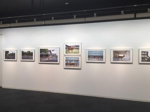 Vue de l'exposition « Beyond the Border » au Ginza Nikon Salon, Tokyo, du 5 au 19 janvier 2016