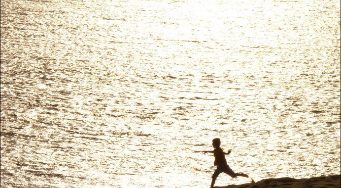 Evelyne Ritaine, Blessures de frontières sur le chemin de migration, in Actes de la journée d'étude Orspere-Samdarra «Vulnérabilités et demande d'asile»,  6/12/2017, Lyon