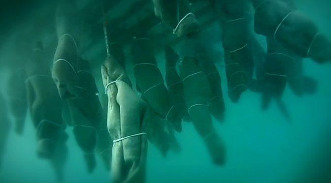 Naufragio al largo di Lampedusa, i morti sono 239. Almeno sei bambini fra le vittime, Giorgio Ruta, repubblica.it, 3/11/2016