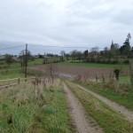 Bourg du Teilleul (Le Teilleul, 50), Février 2014. Cliché 158Z