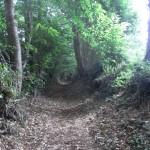 Chemin creux (Saint Mars sur la Futaie, 50), Mai 2013. Cliché 161Z