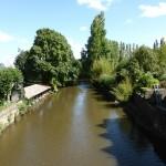 la Sélune au Pont de Mortain amont (Saint-Hilaire-du-Harcouet, 50), Août 2014