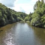 Pont sur le Lair amont (Saint-Laurent-de-Terregatte, 50), Août 2014