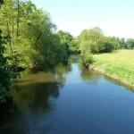 la Sélune au Pont de Signy aval (Ducey, 50), Mai 2014