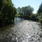 la Sélune au Pont de Montmorel aval (Ducey, 50), Mai 2014