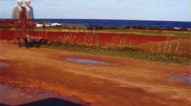 Made in Algeria – Généalogie d'un territoire, INHA, Saison 2015