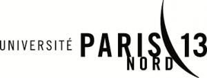 P13 logo