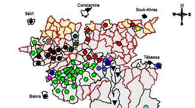 Contribution à la géographie linguistique du berbère chaouïa