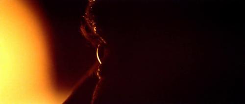 Ses yeux regardent les flammes, la mort